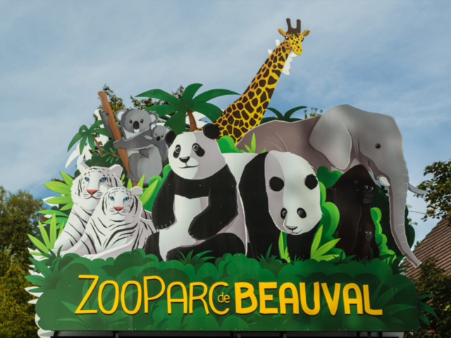 https://www.airius.solutions/wp-content/uploads/ZooParc-de-Beauval-640x480.png
